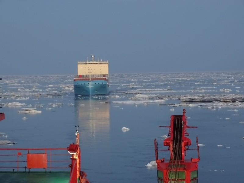 Завершена ледокольная проводка контейнеровоза Maersk