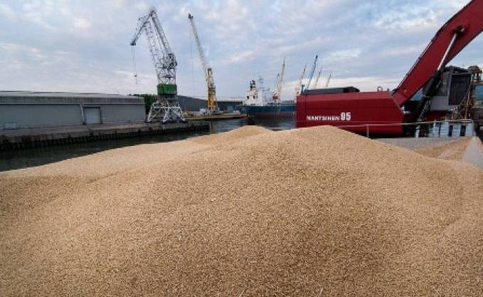 Image result for grain export